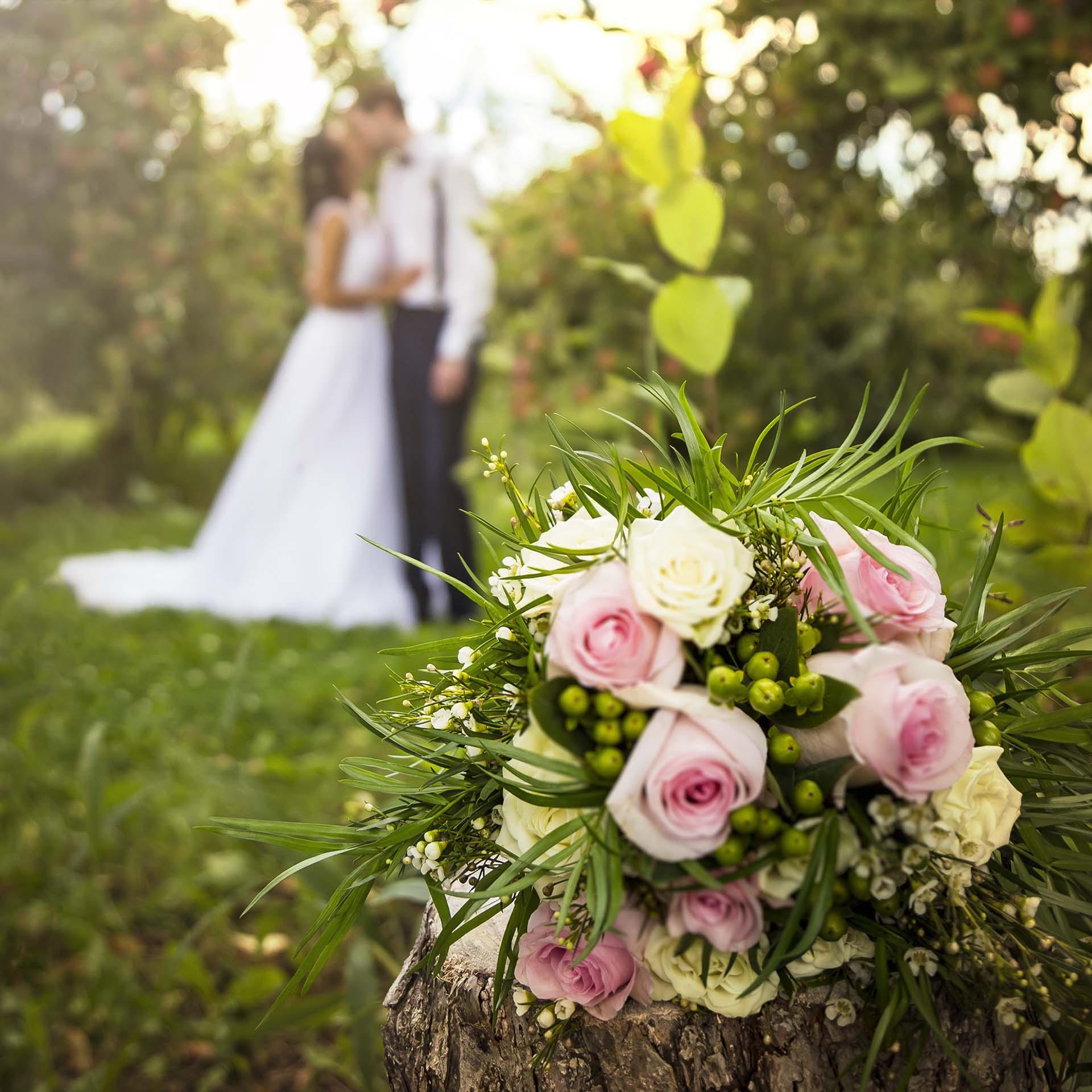 mariage-nature-bellaro-image-photographe-professionnel-photographe-photographer-retouche-artiste-retoucheur-high-end-retouching